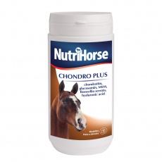 NutriNorse Chondro plus