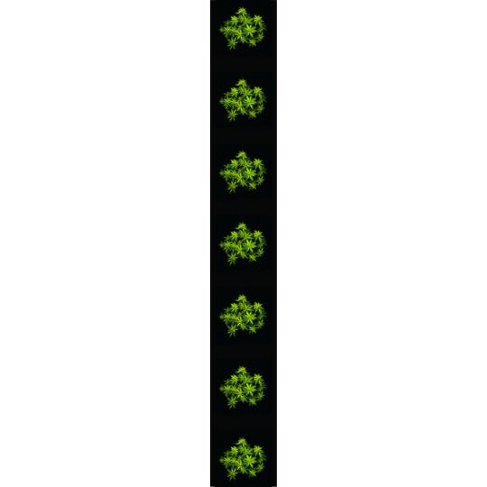 Kšandy 035 konopí