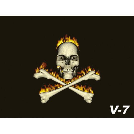 Vlaječka V7 lebka